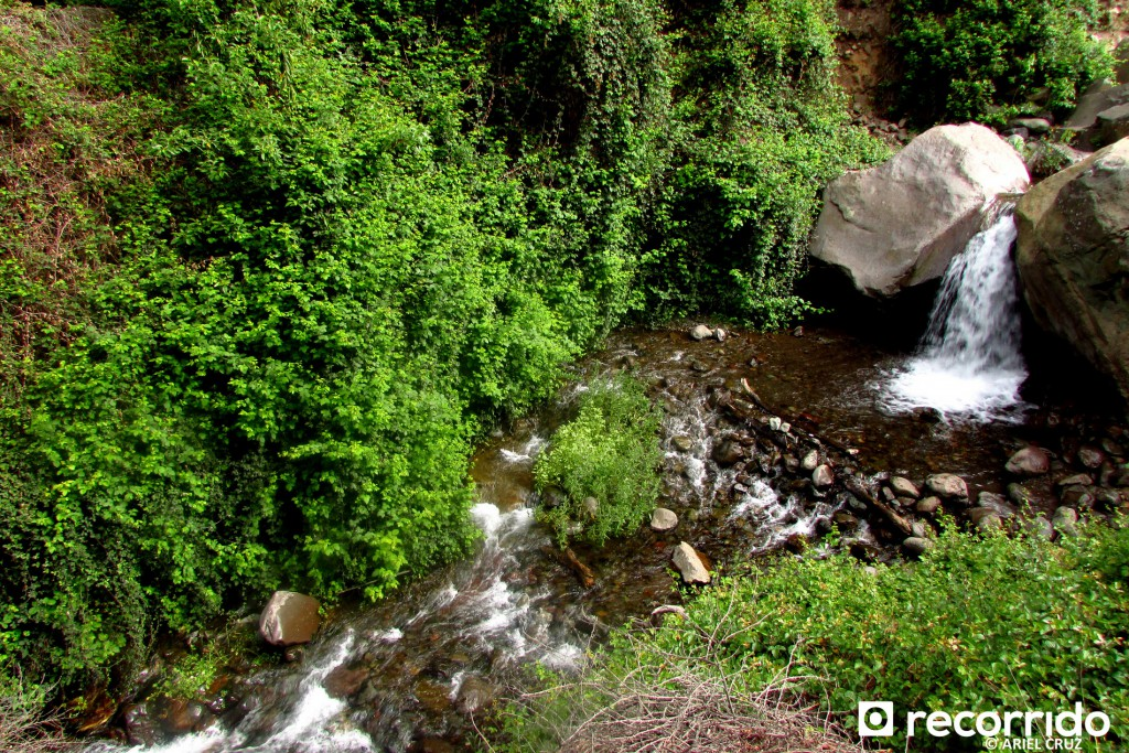 Pequeño Salto de Agua en Sendero Los Peumos