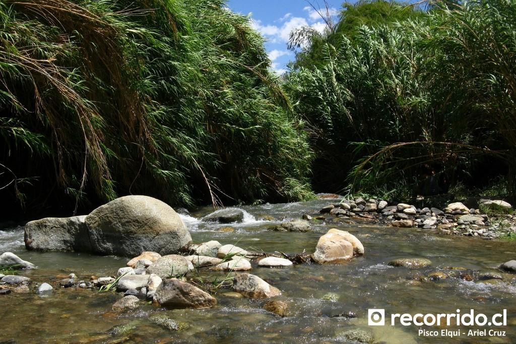El Remanso de los Ponce - Pisco Elqui