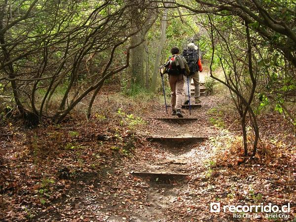 Sendero Aliwuen Mahuida por el bosque