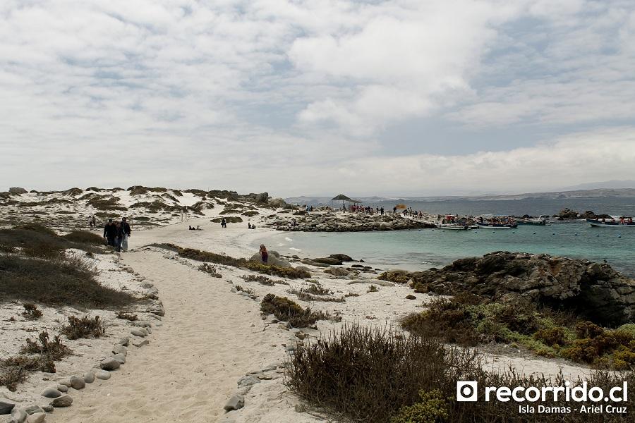 isla damas - playa - conaf - ecoturismo la serena