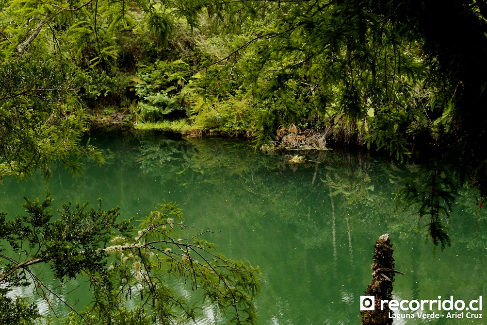 laguna verde - pnvpr