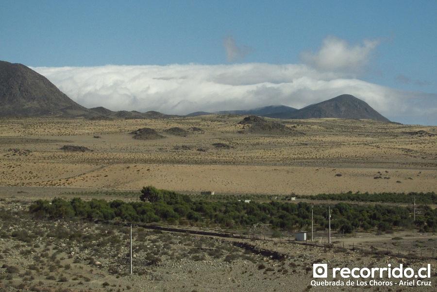 quebrada de los choros - nubes orográficas - cordillera de la costa - oasis - ecoturismo la serena
