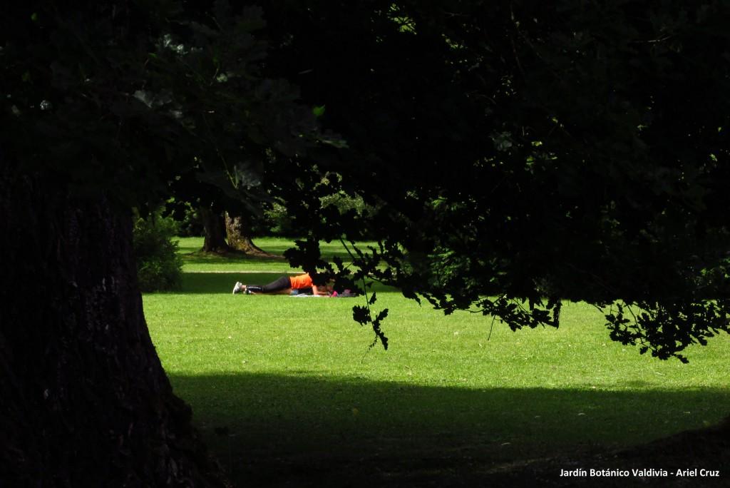 pololeo - jardín botánico uach - pareja