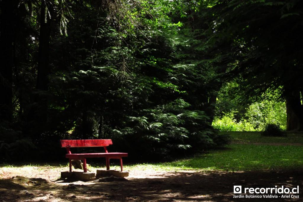 jardín botánico uach