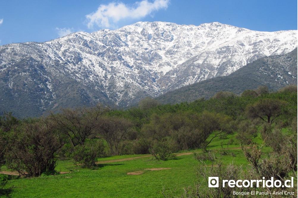 panul - precordillera - cerro minillas
