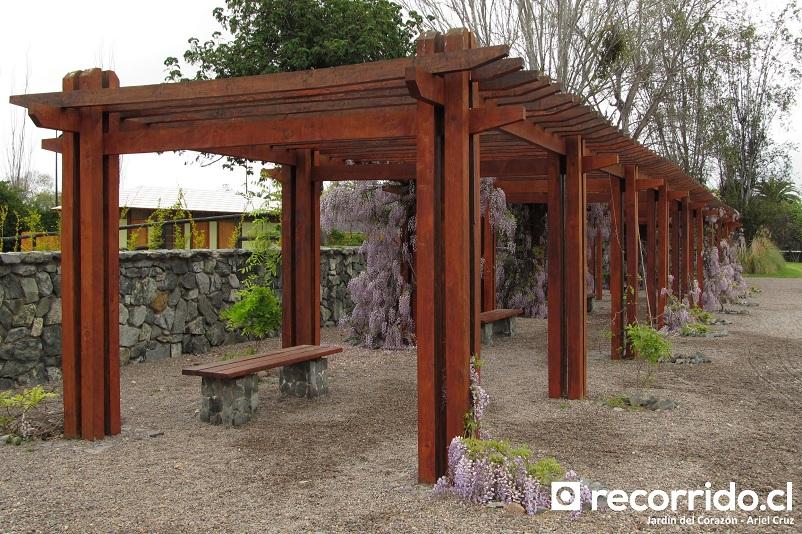 lavanda - jardín japonés - la serena