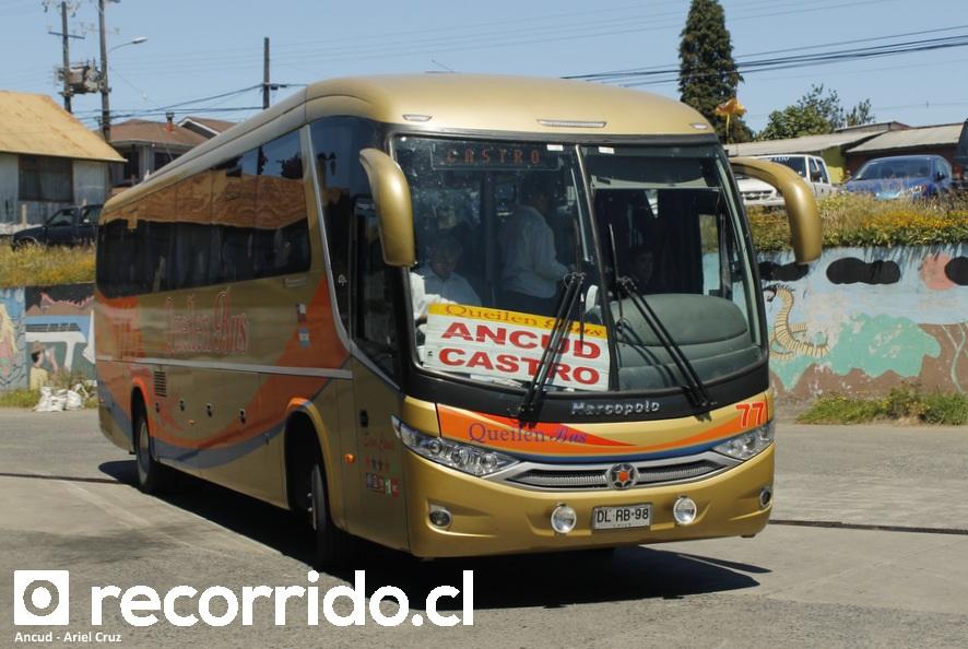 dlrb98 - 77 - queilen bus - viaggio 1050 g7 - ancud