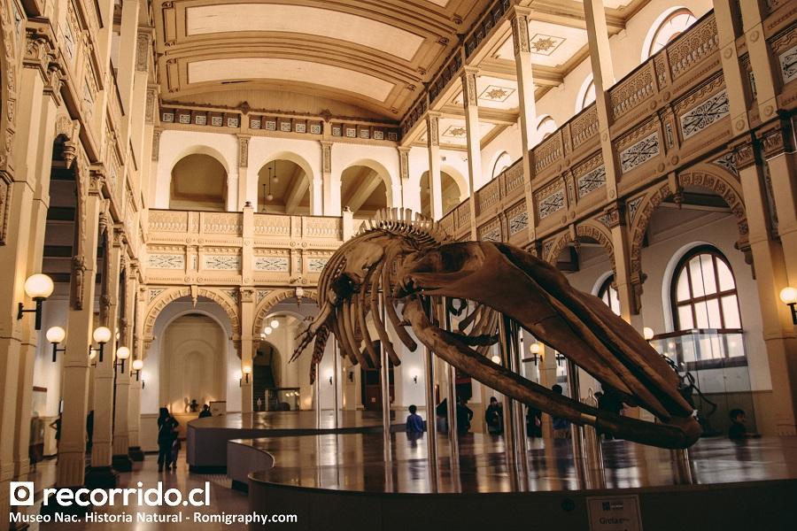 Museo Nacional de Historia Natural y la famosa ballena Greta