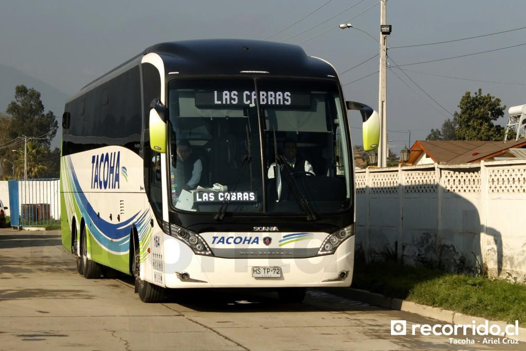 164 - hstp72 - tacoha - neobus new road n10 380 - las cabras