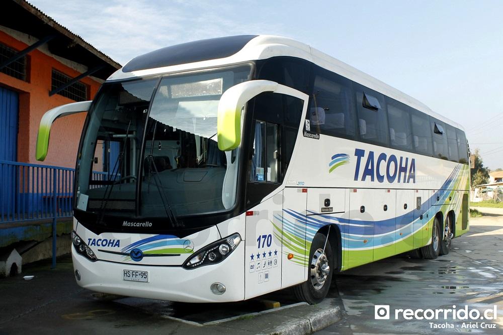 hsff95 - tacoha - roma 370 - mercedes benz - 170 - las cabras