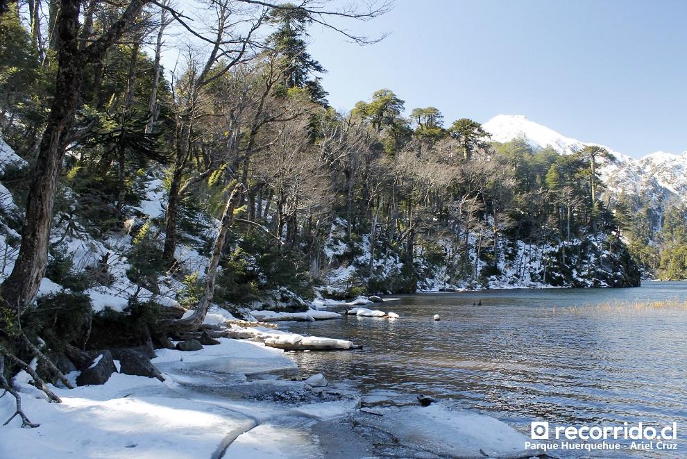 Parque Huerquehue con nieve y el Lago Toro