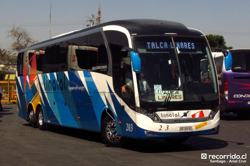203 - hrxh81 - linatal - neobus new road n10 380 - terminal sur